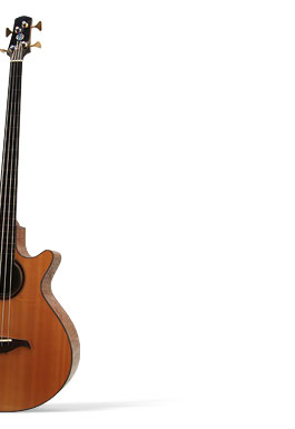 Acoustic Bass in Flame Claro Walnut